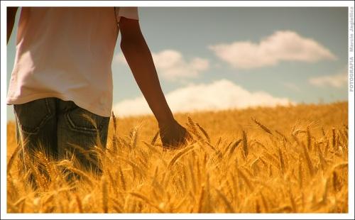 apa arti kehudupan?, arti kecil kehidupan, arti sebuah kehidupan, filsafat, filsafat hidup, kehidupan, makna hidup, makna kehidupan, untuk apa hidup??